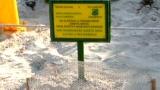 Tartaruga depone le uova a lampedusa notizie e cronaca for Incubazione uova tartaruga